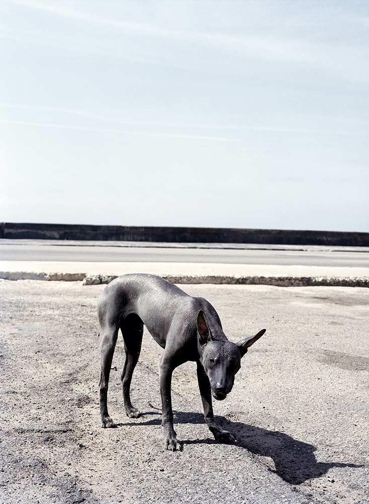 Life-Framer-Urban-Life-Christophe-Coenon