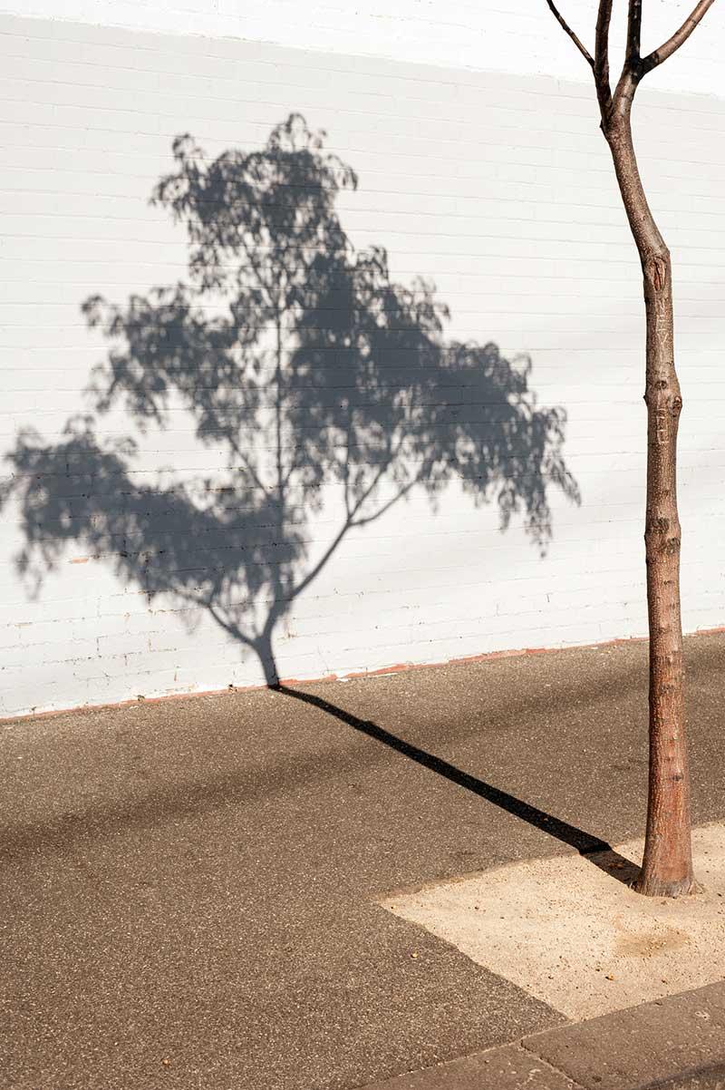 Life-Framer-Urban-Life-Paolo-Benini